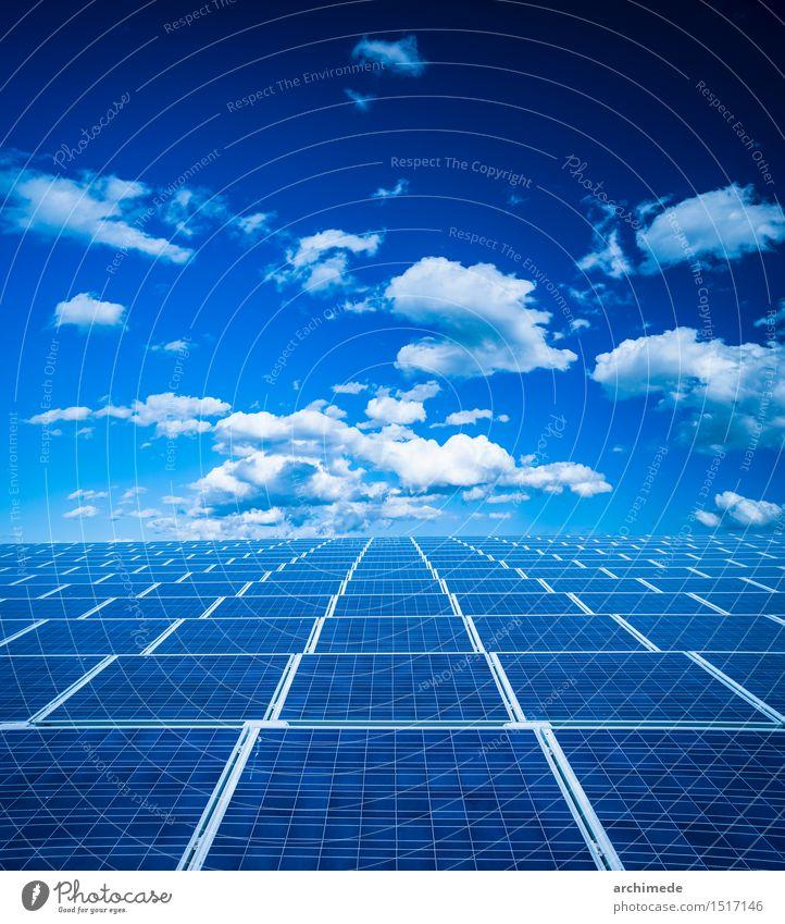 Photovoltaik-Panel Himmel Natur Pflanze blau grün Sommer Sonne Wolken Umwelt Gras modern Technik & Technologie Energie Zukunft Klima Industrie