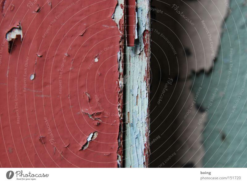 zwischen innen und außen Lack Farbe Farbstoff Anstrich abblättern verfallen verwittert streichen Farbschicht Wand Holz Raum Fensterrahmen Detailaufnahme