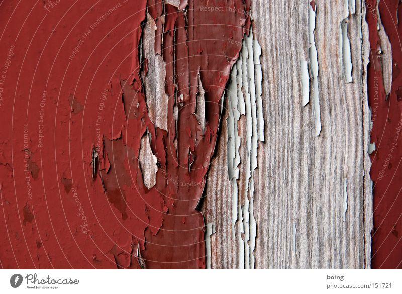 außen Lack Farbe Farbstoff Anstrich abblättern verfallen verwittert streichen Farbschicht Holz Fensterrahmen Vergänglichkeit Detailaufnahme Schichtarbeit