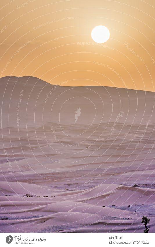Wüste (8/10) Ferien & Urlaub & Reisen Sonne Wärme Sand Tourismus Abenteuer Düne Durst Naher und Mittlerer Osten Arabien Marokko Sahara Tunesien Algerien
