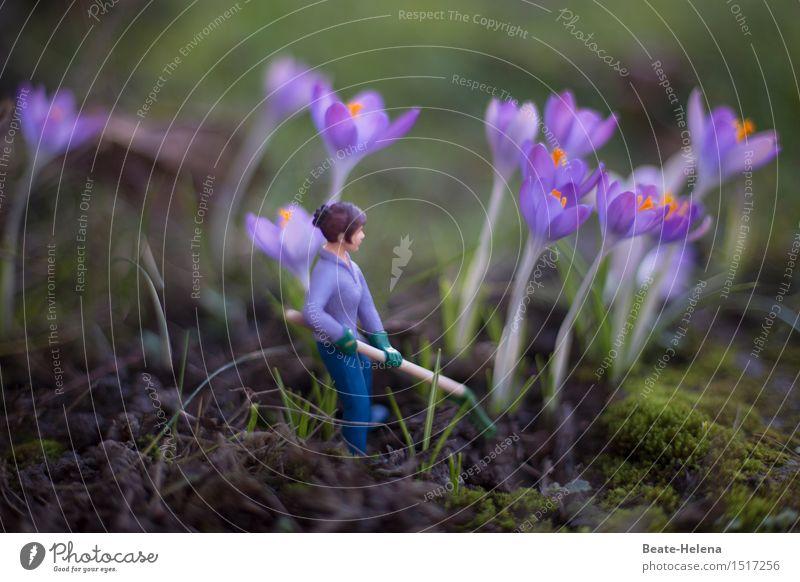 Der Frühling naht! Frau Natur Pflanze grün Erwachsene gelb Blüte Gesundheit Garten Arbeit & Erwerbstätigkeit Freizeit & Hobby frisch Fröhlichkeit Fitness