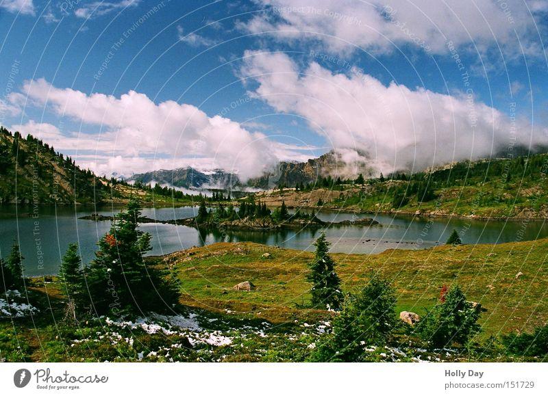 Fels Insel See Banff National Park Nationalpark Alberta Kanada Kitsch Berge u. Gebirge Gebirgssee Blumenwiese Wasser Baum Wolken Schnee Rocky Mountains