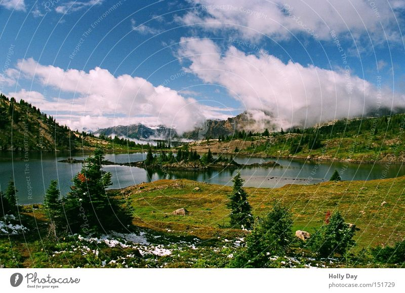 Fels Insel See Wasser Baum Wolken Schnee Berge u. Gebirge Kitsch Kanada Blumenwiese Nationalpark Gewässer Alberta Gebirgssee Rocky Mountains Banff National Park