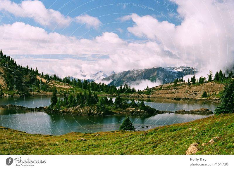 Insel im See Banff National Park Nationalpark Alberta Kanada Kitsch Berge u. Gebirge Gebirgssee Blumenwiese Wasser Baum Wolken Schnee Rocky Mountains