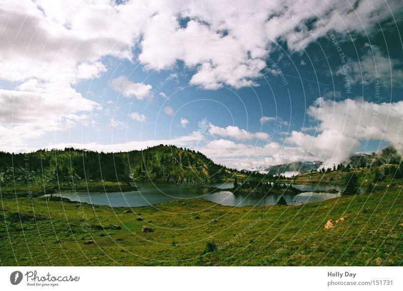 Unter der kontinentalen Wasserscheide Baum Wolken Berge u. Gebirge See Insel Kitsch Kanada Blumenwiese Nationalpark Alberta Bergwiese Gebirgssee Rocky Mountains