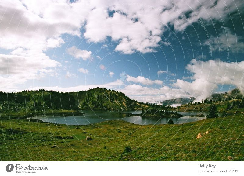 Unter der kontinentalen Wasserscheide See Banff National Park Nationalpark Alberta Kanada Kitsch Berge u. Gebirge Gebirgssee Blumenwiese Baum Wolken Bergwiese