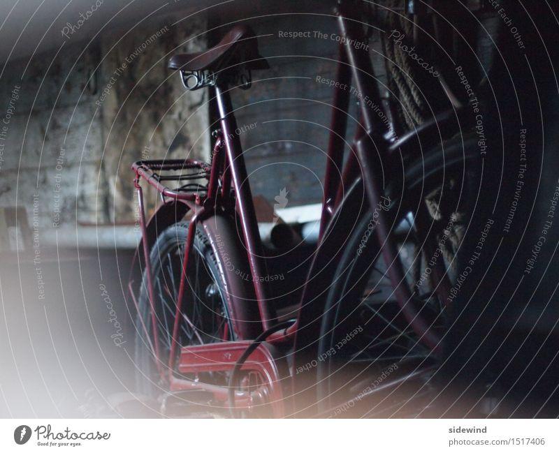 old bike Stil ruhig Freizeit & Hobby Ferien & Urlaub & Reisen Tourismus Ausflug Abenteuer Fahrradtour Dekoration & Verzierung Fahrradfahren Zeitmaschine