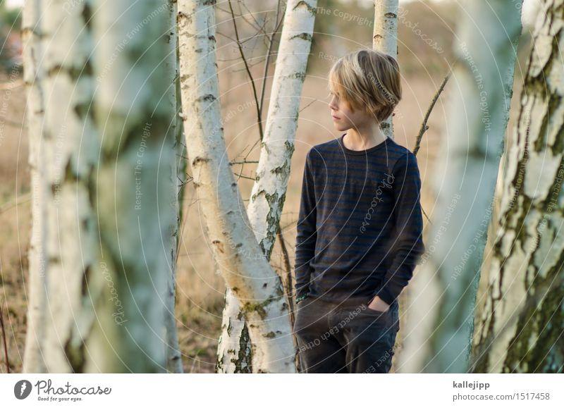 am waldrand Mensch Kind Junge Kindheit Leben Kopf Haare & Frisuren Gesicht 1 stehen Birkenwald Baumrinde Wald Farbfoto Außenaufnahme Tag Licht Schatten Kontrast