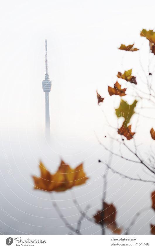 Benztown im Herbst Blatt Herbst Nebel Aussicht Turm Denkmal Radio Wahrzeichen Stuttgart Fernsehturm Sendemast Baden-Württemberg