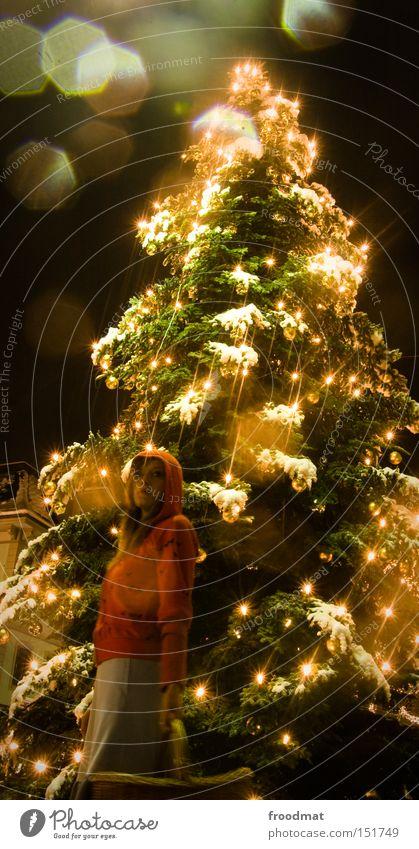 geschenk des... Frau Weihnachten & Advent Baum schön Winter Schnee Beleuchtung gold Weihnachtsbaum Märchen Lichterkette Rotkäppchen Veranstaltungsbeleuchtung