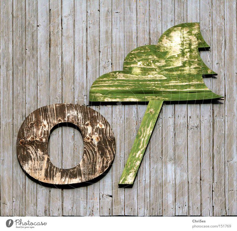 O-Tannenbaum Weihnachtsbaum Weihnachten & Advent Holz Fabrik Münster grün Holzbrett verfallen verwittert alt Wand Fichte Industrie Vergänglichkeit braun Baum