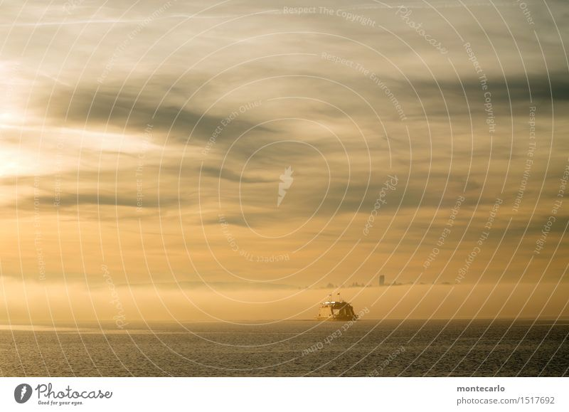 nebel richtung konstanz Himmel Natur Wasser Landschaft Ferne Winter kalt Umwelt Herbst See Nebel Luft Klima Schönes Wetter Urelemente Güterverkehr & Logistik
