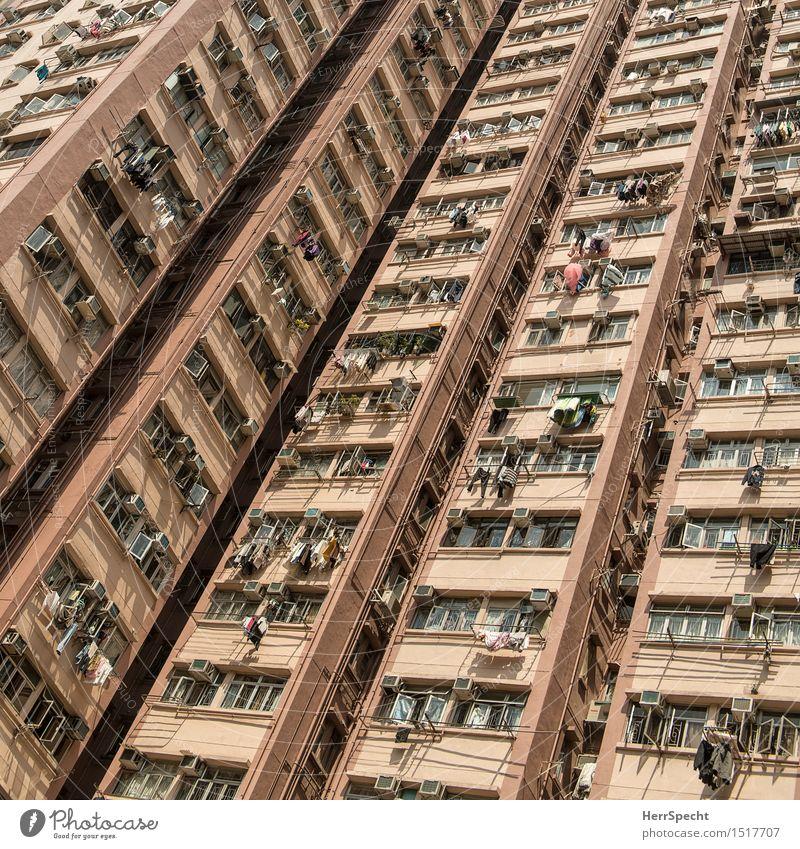 Käfighaltung Stadt Fenster Architektur Leben Gebäude Fassade Wohnung Häusliches Leben trist hoch viele Bauwerk Skyline Stadtzentrum Wohnhochhaus exotisch
