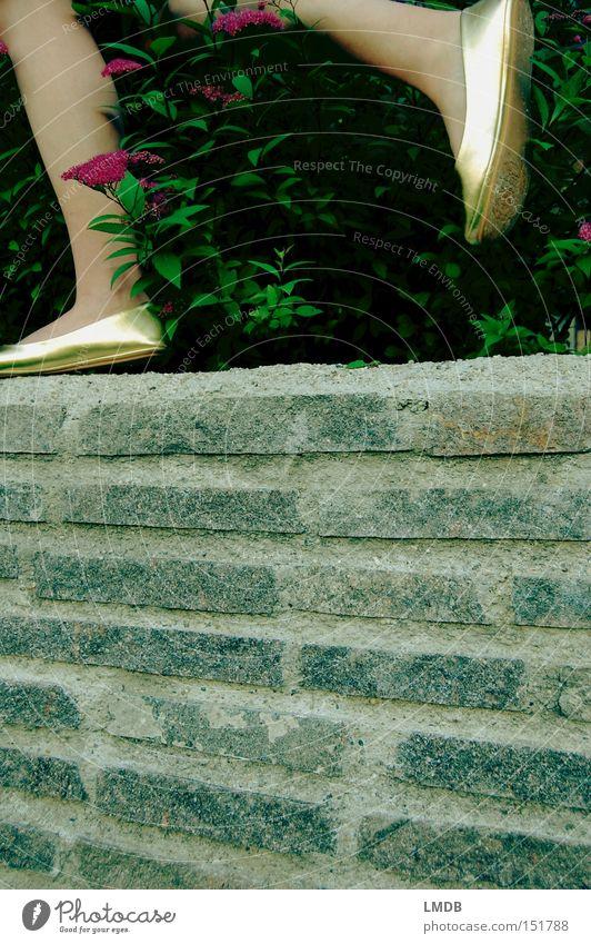 Cindarella auf der Flucht Beine Schuhe Mauer Stauden Blüte gold Märchen Prinzessin laufen Eile rennen Reichtum schön aus dem Bild