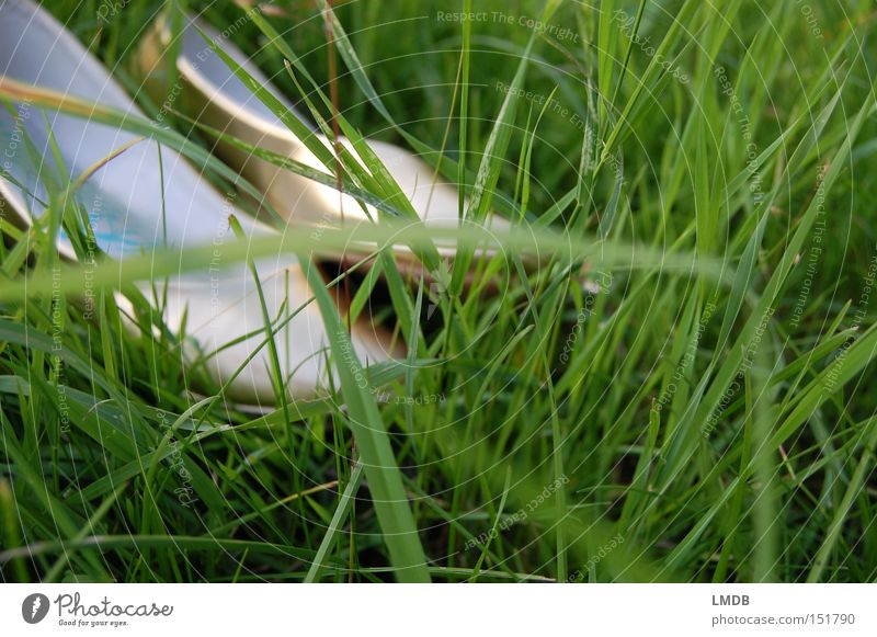 Barfuß ist schöner! Natur Sommer Erholung Wiese Gras Schuhe gold frei Märchen Prinzessin Tanzschuhe