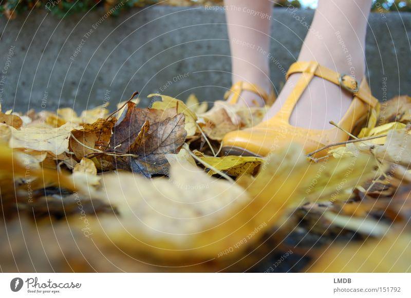 Gelb wie der Herbst Blatt gelb Fuß Schuhe Beine Bekleidung Perspektive Damenschuhe Fußknöchel