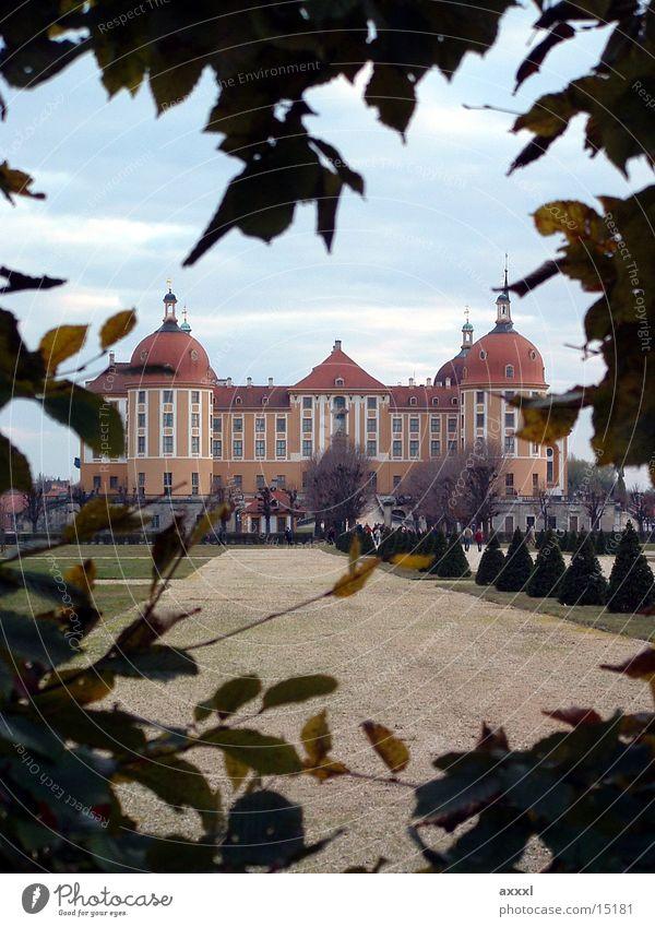 Schloss Moritzburg Architektur Romantik Burg oder Schloss Hecke Sachsen Dresden Jagdschloss Moritzburg