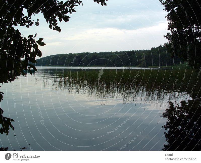 See Dämmerung Reflexion & Spiegelung Abend Wasser Reflektion
