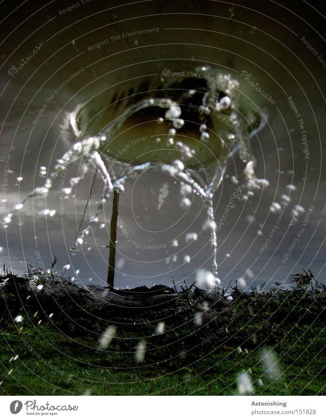 es tropft von oben Wasser Himmel blau dunkel Wiese Gras nass Wassertropfen Tropfen skurril Strommast spritzen Pfütze Spiegelbild verkehrt Wasserspiegelung