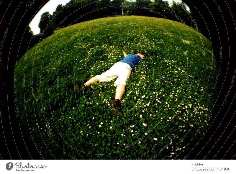 Die Welt umarmen ... Sommer ruhig Erholung Wiese Gras Freiheit schlafen rund Frieden Lebensfreude Sonnenbad Gänseblümchen Umarmen Fischauge Zärtlichkeiten