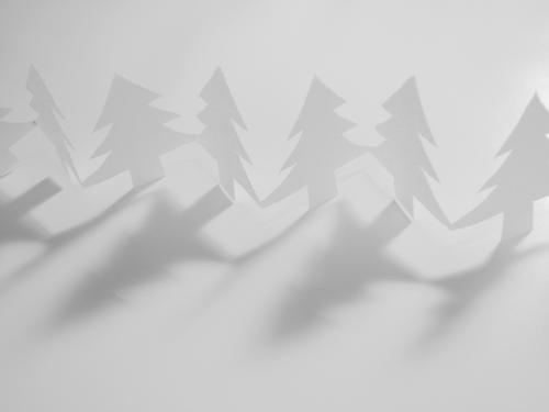 White Christmas Schwarzweißfoto Innenaufnahme Studioaufnahme Nahaufnahme Menschenleer Textfreiraum oben Textfreiraum unten Freisteller Kunstlicht Licht Schatten