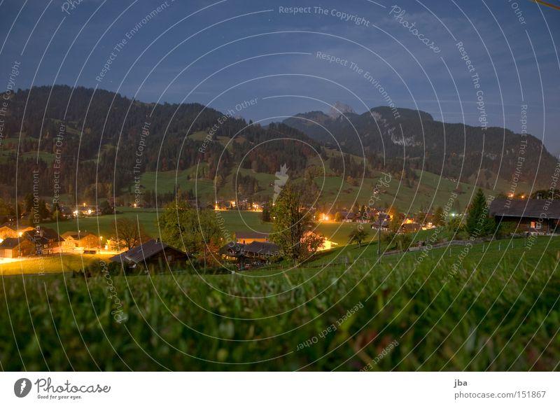 spät abends 2nd Nacht Abend Mondschein Vollmond Schatten Wiese Aussicht Baum Berge u. Gebirge Licht Berghang Gras Lampe Beleuchtung Stimmung Langzeitbelichtung