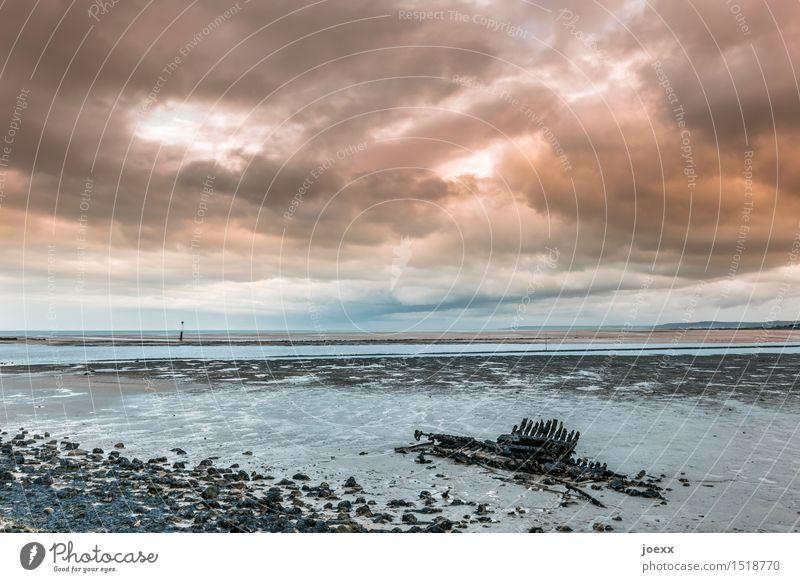 Skelett Landschaft Wasser Himmel Wolken Horizont schlechtes Wetter Küste Schiffswrack Holz alt blau orange schwarz weiß Endzeitstimmung Vergänglichkeit Ferne
