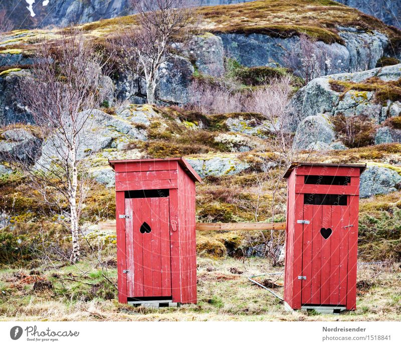 Irritation Landschaft Einsamkeit Berge u. Gebirge Gras Holz außergewöhnlich Felsen Tür Dekoration & Verzierung Fröhlichkeit Herz einfach Zeichen Freundlichkeit