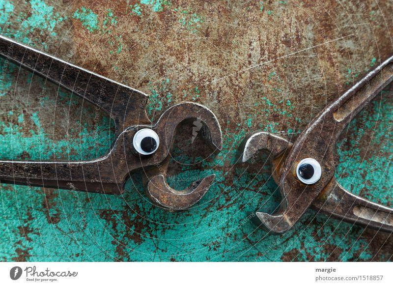 Zwei rostige K(n)eifzangen mit Augen keifen sich an Handwerker Arbeitsplatz Baustelle Dienstleistungsgewerbe Team Werkzeug Metall Aggression braun türkis