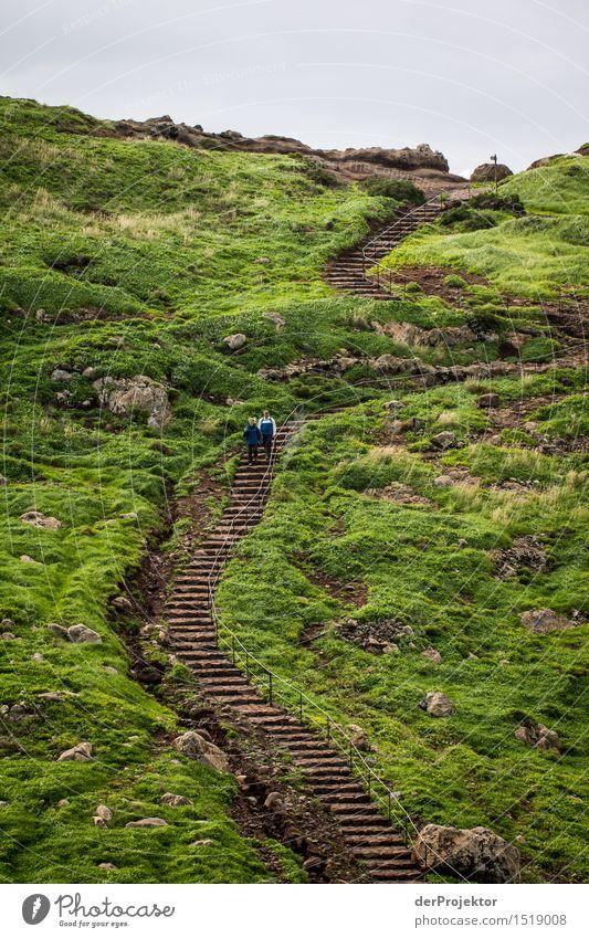 Walk the line 5 Ferien & Urlaub & Reisen Tourismus Ausflug Abenteuer Ferne Freiheit Berge u. Gebirge wandern Umwelt Natur Landschaft Pflanze Tier Winter Wiese