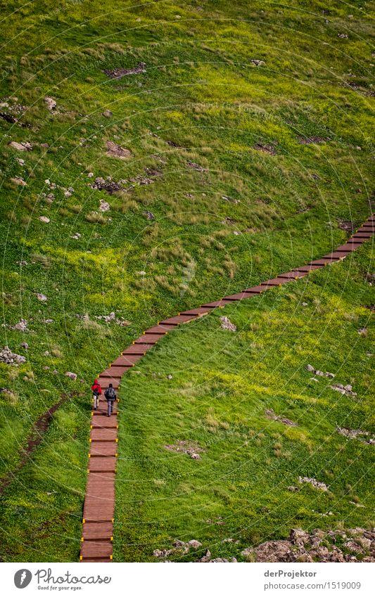 Ein langer Weg durchs Grün Ferien & Urlaub & Reisen Tourismus Ausflug Abenteuer Ferne Freiheit Berge u. Gebirge wandern Umwelt Natur Landschaft Pflanze Tier