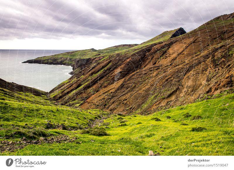 Das ist nicht Schottland Natur Ferien & Urlaub & Reisen Pflanze Meer Landschaft Einsamkeit Tier Ferne Winter Strand Berge u. Gebirge Umwelt Küste Freiheit