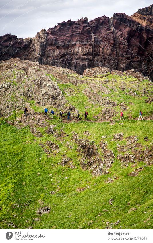 Walk the line 4 Natur Ferien & Urlaub & Reisen Pflanze Meer Landschaft Tier Ferne Winter Berge u. Gebirge Umwelt Küste Freiheit Felsen Tourismus wandern Kraft