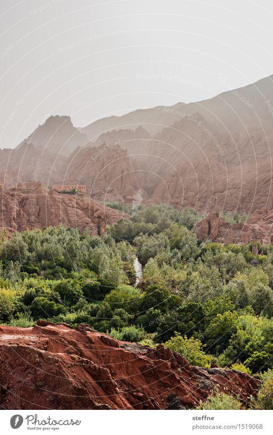 Arabian Dream VI Marokko Orient Arabien arabisch Urlaub Tourismus Atlasgebirge Berg Gebirge Fels Stein