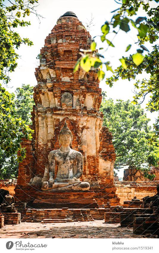 Alte Buddha-Statue, in Ayutthaya, Thailand Design Gesicht Meditation Kultur Himmel Wolken Architektur alt gelb Glaube Religion & Glaube antik Asien asiatisch