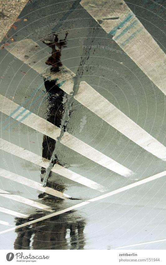 Sieg again Herbst Straße Berlin Regen Schilder & Markierungen Denkmal Wahrzeichen Pfütze Hauptstadt Drehung Fahrbahn Goldelse Siegessäule