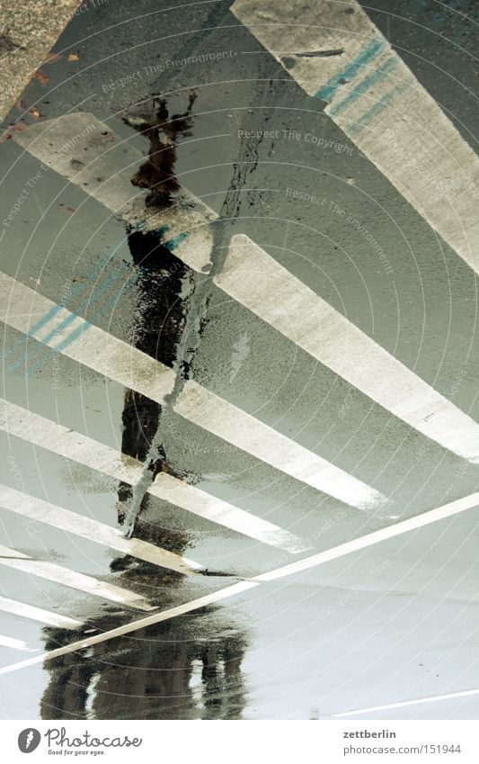 Sieg again Siegessäule Wahrzeichen Berlin Hauptstadt Straße Pfütze Reflexion & Spiegelung Fahrbahn Schilder & Markierungen Herbst Regen Drehung Goldelse Denkmal