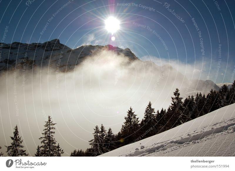 Mountain Dreamworld I. schön Himmel Sonne Winter Wolken Wald Schnee Berge u. Gebirge wandern Nebel Wetter bedrohlich Spuren aufsteigen Wintersport Traumwelt