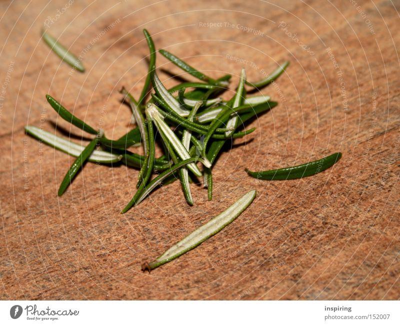 Rosmarin lässt grüßen grün Pflanze Gesundheit Kochen & Garen & Backen Küche Gastronomie Kräuter & Gewürze Gemüse lecker Feinschmecker