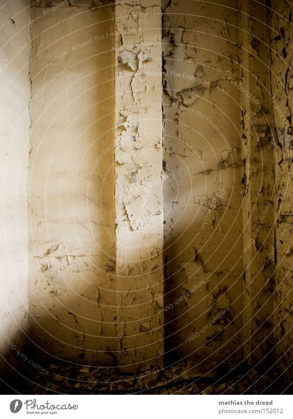 THIS IS A WALL schön alt Einsamkeit Farbe Wand Traurigkeit Raum leer Ecke einfach verfallen Flur Putz bewegungslos Fuge platzen