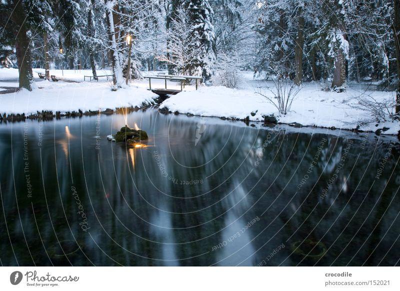 Wintersee See Wald Park Brücke Wasser Wasserfontäne Scheinwerfer Laterne Schnee Eis Reflexion & Spiegelung Tanne Frieden Garten Bad wörishofen