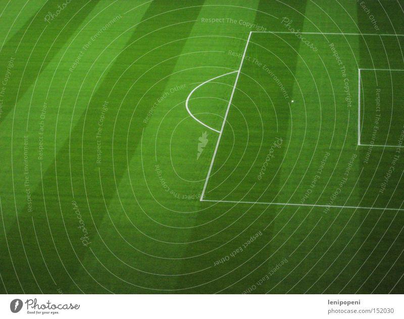 Streifenteppich grün Sport Wiese Spielen Gras Linie Fußball Feld frisch ästhetisch Rasen Freizeit & Hobby Sauberkeit Streifen Tor Sportveranstaltung