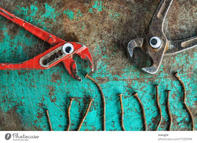 Futterneid II grün Tier Essen Auge braun Vogel Arbeit & Erwerbstätigkeit Ernährung Baustelle Rost Konflikt & Streit Fressen Arbeitsplatz Werkzeug Handwerker