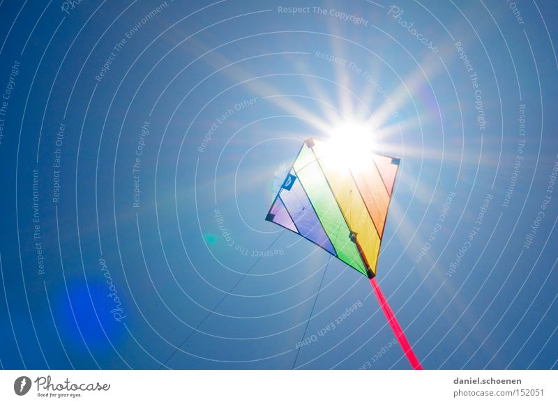 weit weg fliegen Wind Lenkdrachen Kiting Farbe mehrfarbig Sommer Herbst Sonne Sonnenstrahlen Wetter Licht Himmel blau Freude Himmelskörper & Weltall Luftverkehr