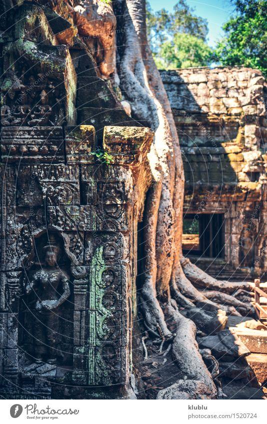 Angkor Thom in Kambodscha Ferien & Urlaub & Reisen Tourismus Kultur Erde Baum Park Urwald Felsen Ruine Gebäude Architektur Denkmal Stein alt historisch wild