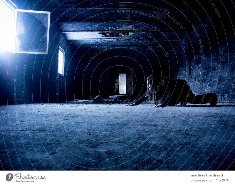 SCHLEICHEKATZE Mann blau schwarz Einsamkeit dunkel Fenster Katze Raum Beton Vergänglichkeit verfallen geheimnisvoll Lichtschein schleichen Schleichen
