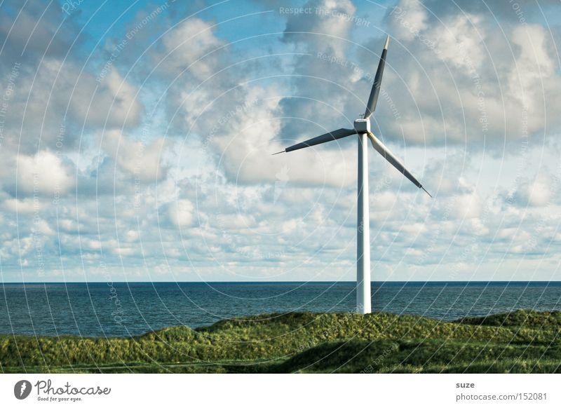 Windrad Meer Wirtschaft Energiewirtschaft Erneuerbare Energie Windkraftanlage Umwelt Himmel Wolken Küste authentisch ökologisch Farbfoto Außenaufnahme