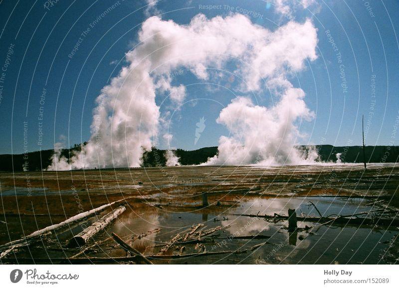 Rauchtor Wasser Himmel weiß Baum kalt Tod USA Tor Schönes Wetter Blauer Himmel Wasserdampf Nationalpark Yellowstone Nationalpark