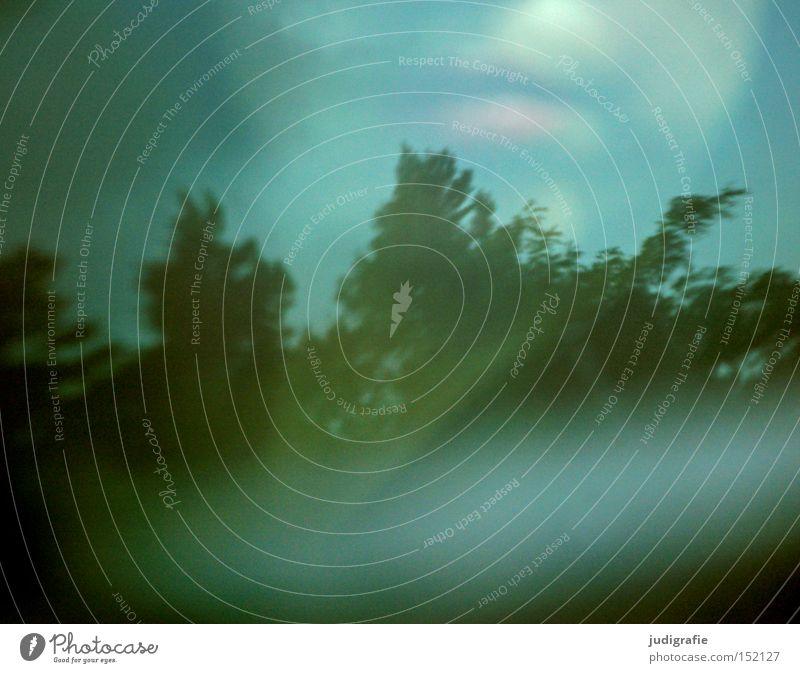 Autobahn Rückspiegel Autofenster fahren Baum Lippen Frau Himmel Reflexion & Spiegelung Farbe Verkehr Ferien & Urlaub & Reisen Reflexion u. Spiegelung