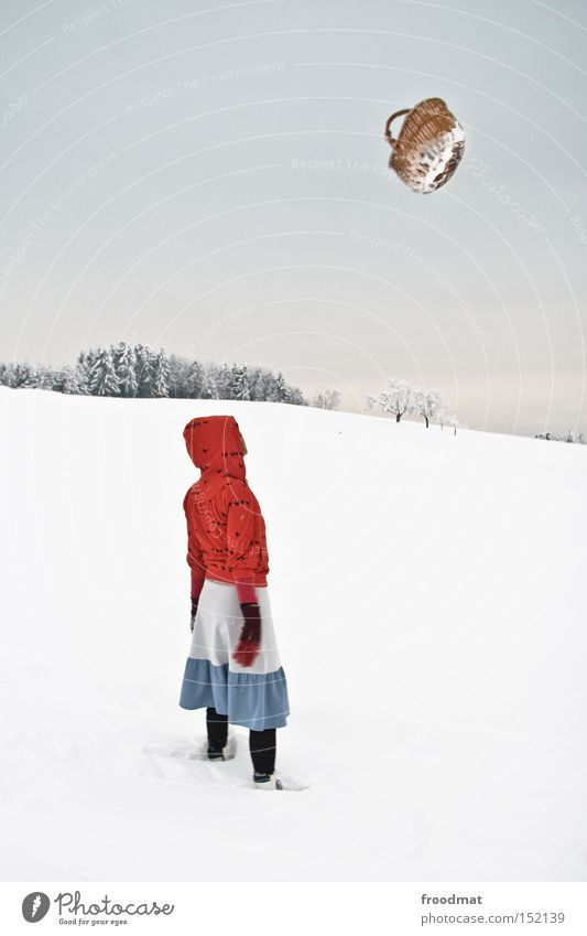 Flugkörber weiß Baum ruhig Winter kalt Berge u. Gebirge Schnee grau Schweiz Märchen kahl Korb Rotkäppchen